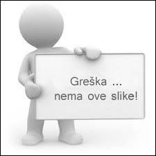 patka_na_mediteranski_nacin.jpg